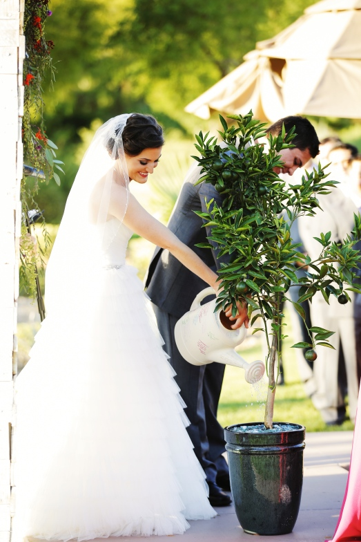 Unity tree watering during ceremony by Layers of Lovely Floral Design