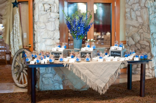 Escort card table for cowboy themed baby shower