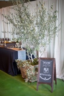 Olive tree guest book
