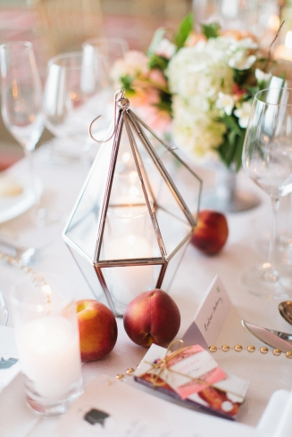 Geometric terrariums and peaches
